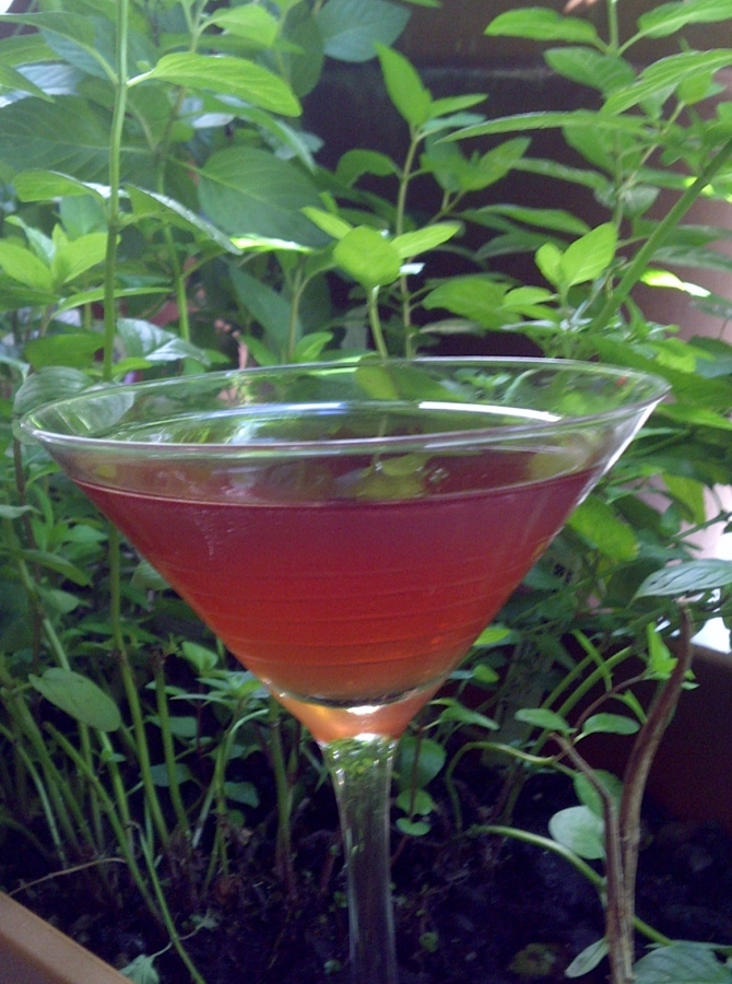 Carkeek Cocktail